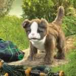 Scottish Fold Kitten Puppet