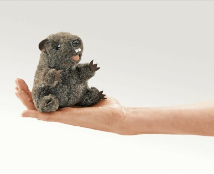 Mini Groundhog Puppet
